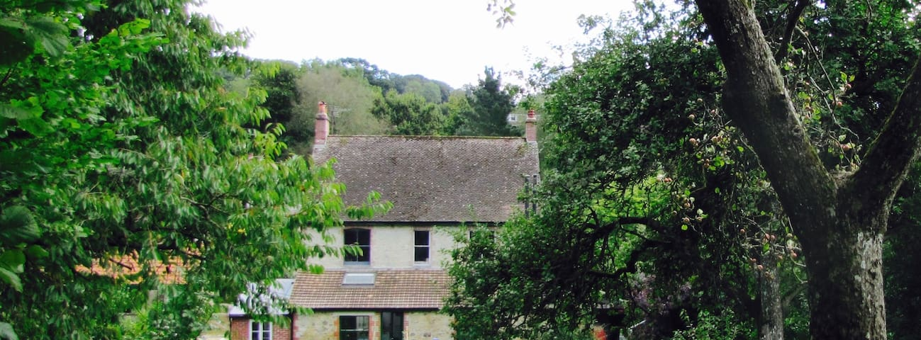Red Lion House - A nature lovers haven - Membury - House