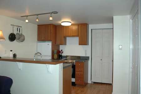 Affordable In-Town Apartment - Tisbury - Huoneisto