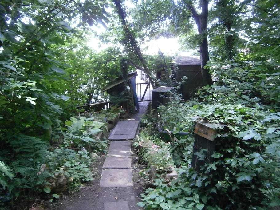 The path leading to the Cabin and the Jetty