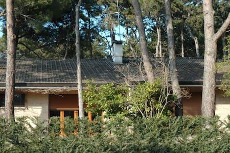Villa Francesca D - Ampia Villa con giardino - Lignano Sabbiadoro
