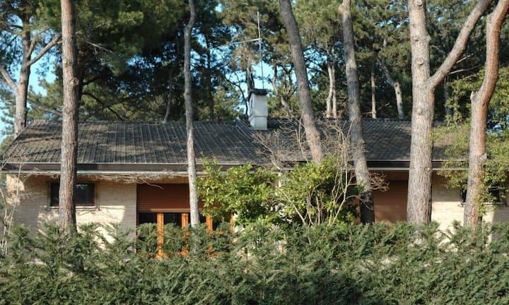 Villa Francesca D - Spacious house with garden