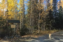 My Alaska Cabin - Panoramic Denali Mountain View