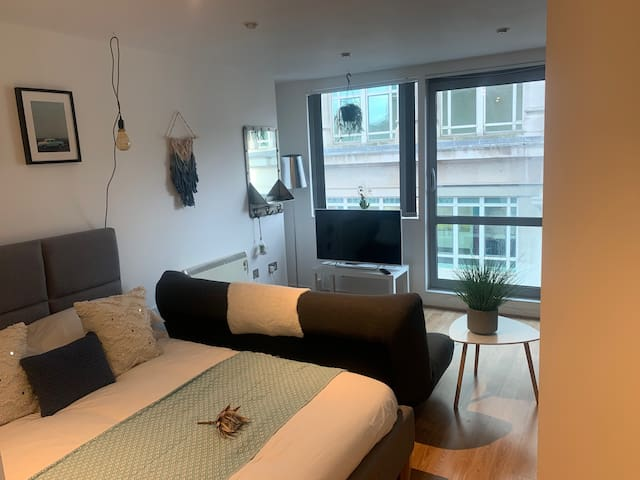 Large Studio Apartment in the heart of Sheffield
