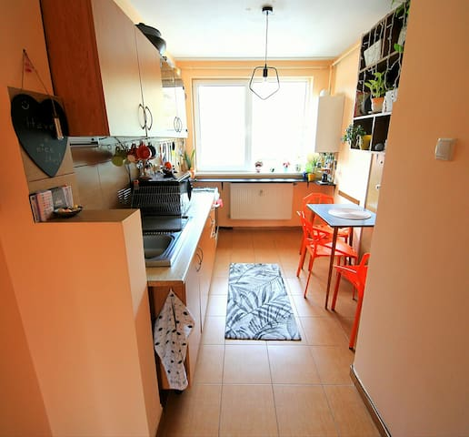 Central apartment with river view (1 or 2 persons)