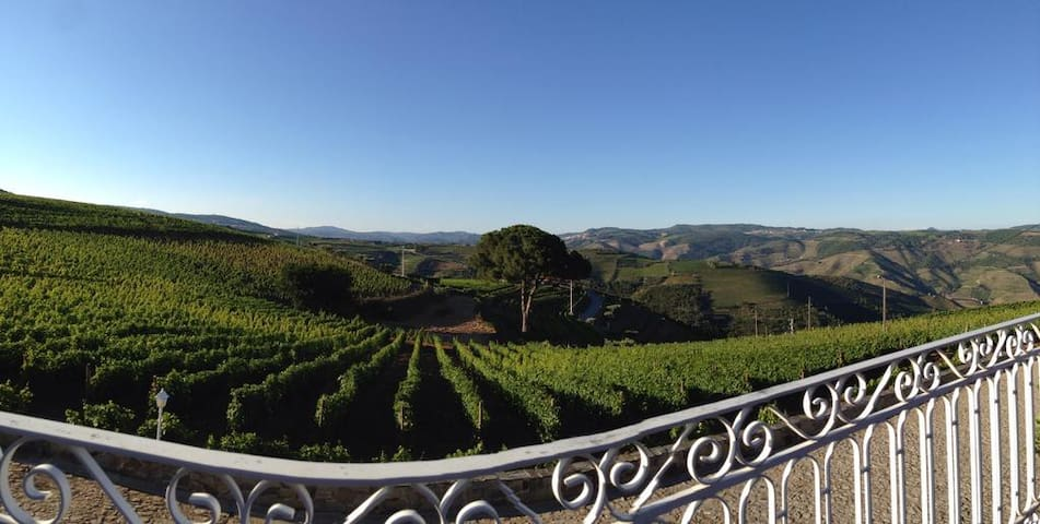 Quinta dos Espinheiros - Provesende - Villa