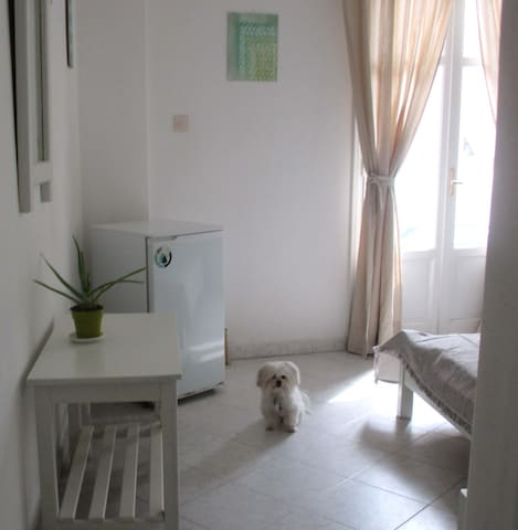 Perfect place to stay if you are traveling with your furry friend!   (Small, friendly dogs under 10 kilos).