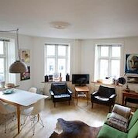 Cozy apartment in the most hip area of Nørrebro