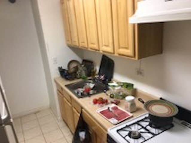 Spacious Bronx base/New York Apartment - Bronx - Apartmen