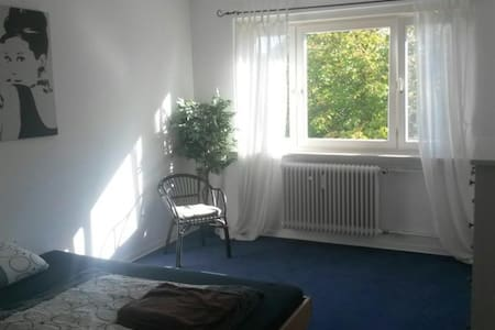 Cosy central room, 3 Minutes to VW - Wohnung