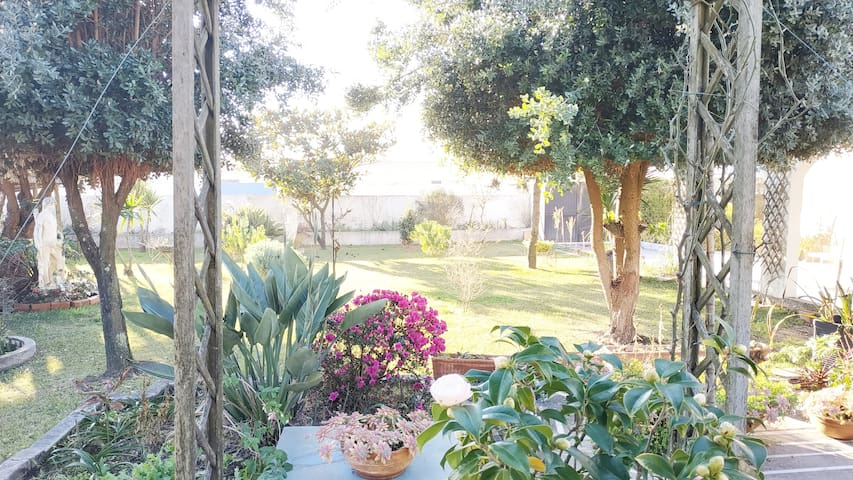 Airbnb® | Valadares – Ferienwohnungen & Unterkünfte ...