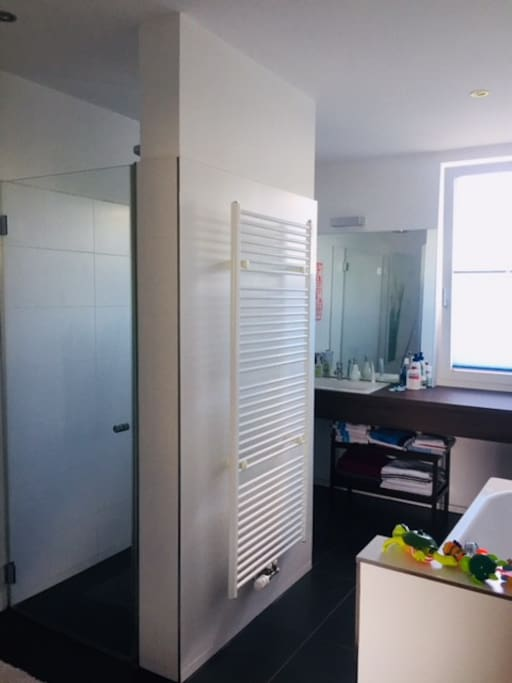 Bathroom with shower and bathtub