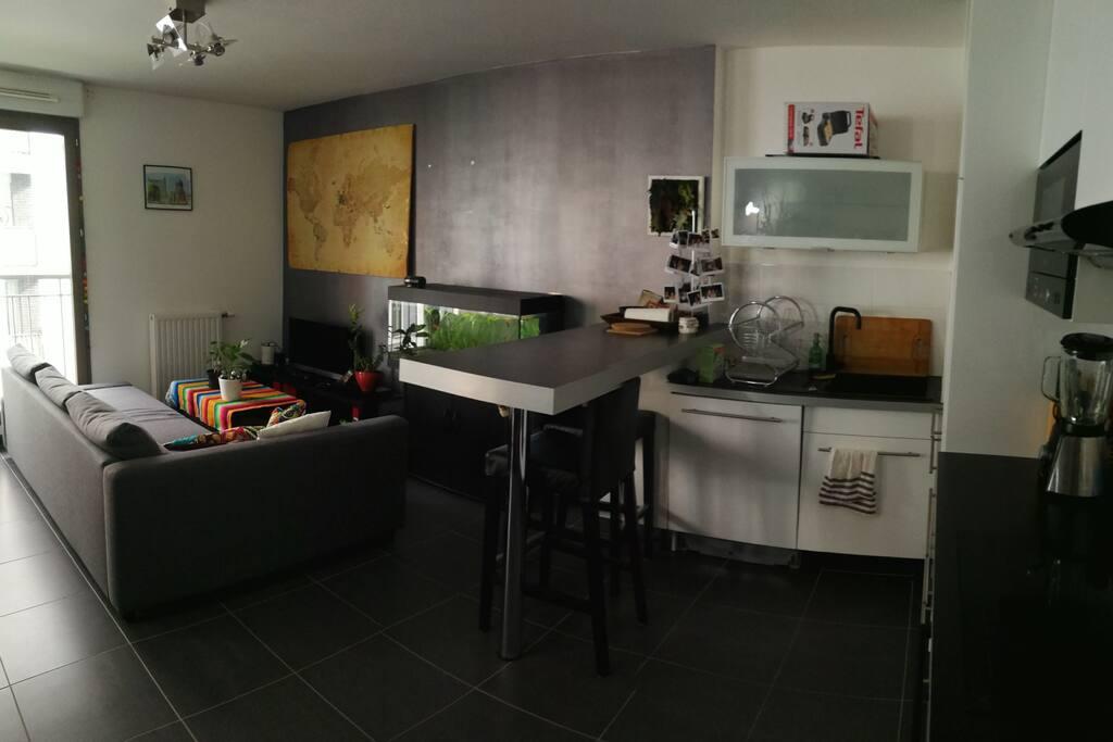 Salon + cuisine ouverte