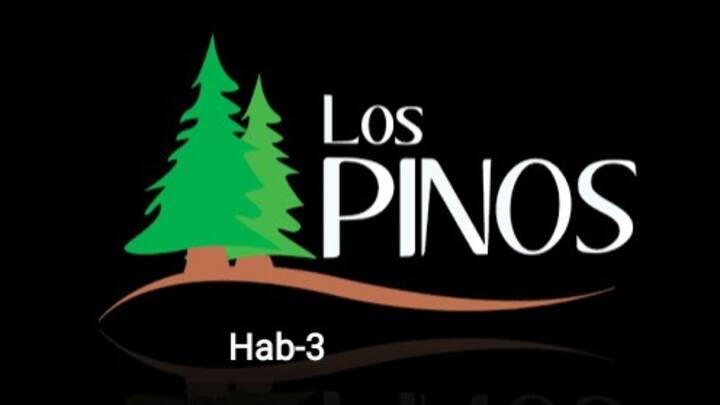 Habitación Privada #3 Hostal Los Pinos
