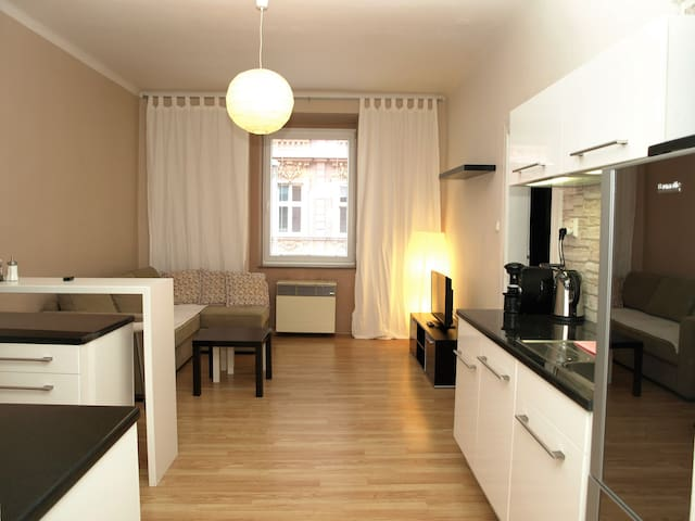 Fully equipped apartment just in the city center - Pilsen - Appartement