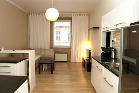 Fully equipped apatrment just in the city center - Pilsen - Apartmen