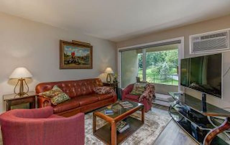 Furnished Condo Perfect for Mayo Patients!