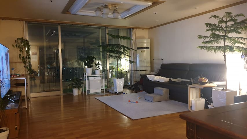 Big, quiet apt by Han river branch. Central Seoul.