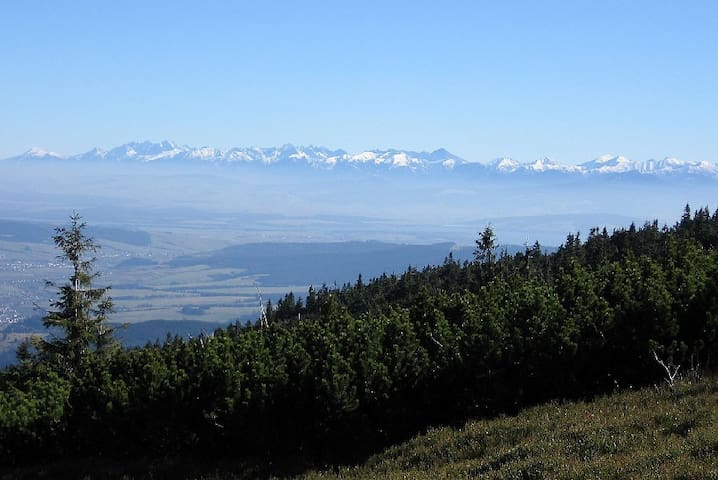 Orawski Gościniec Nad Potokiem ,góry,lasy,cisza - Podwilk - House