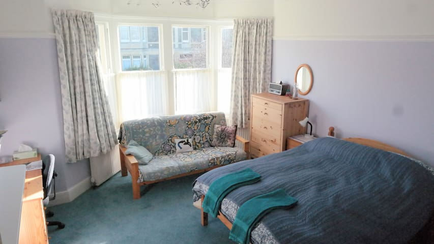 Spacious room in characterful house - Bristol - Hus