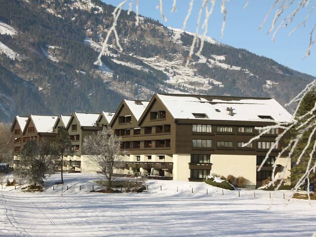 2-Zimmer-Wohnung Alexander für 3 Personen in Gasteinertal