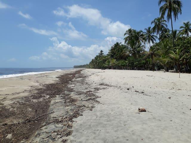 Hotel Finca Playa Palomino Habitacion Doble