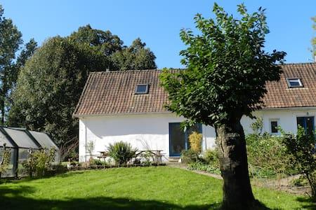 la Vallée d'Orya - Torcy - Maison
