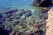 Spiaggia rocciosa adiacente al porticciolo turistico.