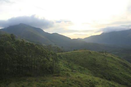 Mountain walk - Munnar, Kerala, IN