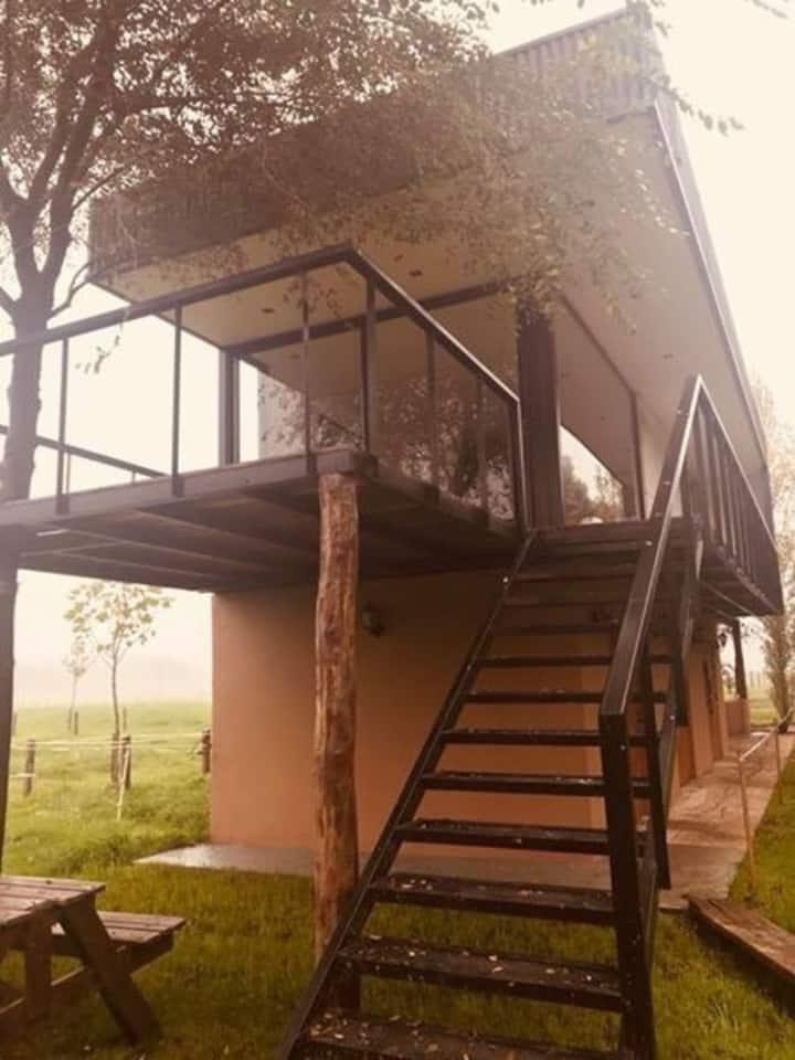 Cabaña QUILLA HUE // Alojamiento Rústico.