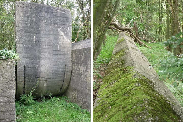 At the northern parts of the 'Zuid Kennemerland National Park' - in IJmuiden - called 'Heerenduinen' and 'Midden Herenduin' in Driehuis you can find WW II remainders, like this massive concrete anti-tank-door and anti-tank-wall of kilometers length