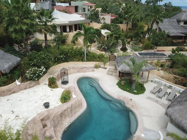 One Of A Kind Baja Palm Leaf Roof Villa