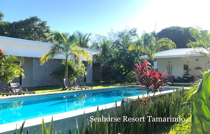 7 Seahorse Resort Tamarindo  2P/POOL-VIEW/AC/TV
