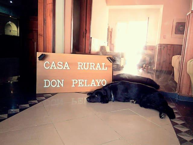 Casa Rural Don pelayo