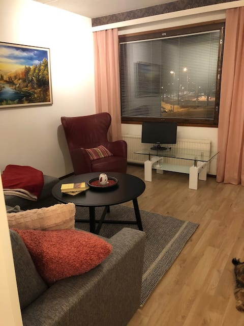CHARMING CONDO!  near in Lahti center