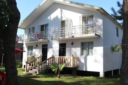 Grigoleti Apartment