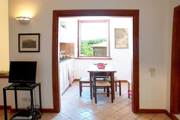 Apartment with 2 bedrooms in Barbarano Romano, with wonderful city view and WiFi - 30 km from the beach