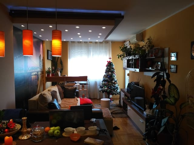 Duplex Apartment with big terrace and greath view - โนวิ สาด - อพาร์ทเมนท์