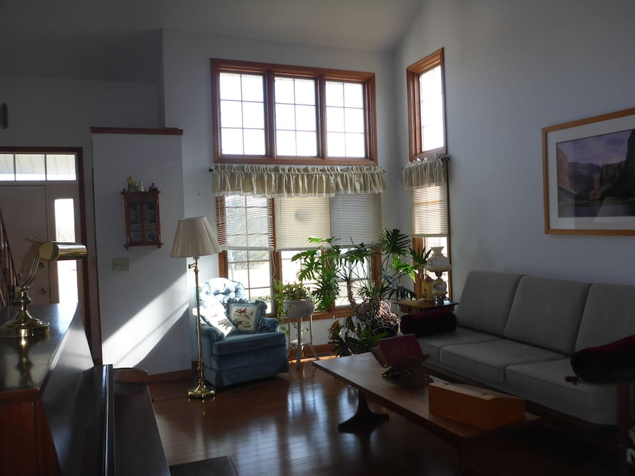 sunny living room with couch
