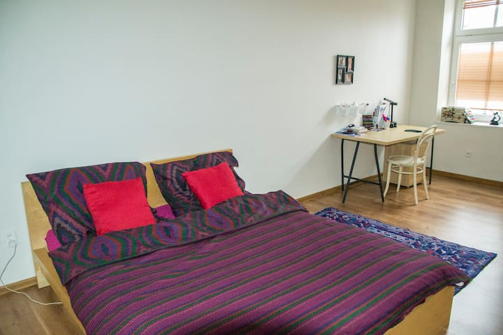Apartment in centre of Olomouc - Olomouc - Apartment