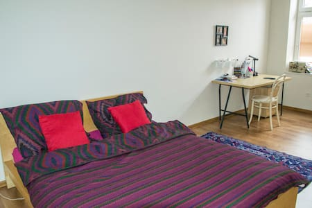 Apartment in centre of Olomouc - Olomouc
