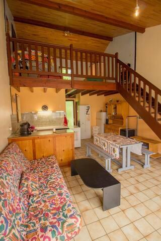 Appartement 1 chambre et mezzanine - Aureilhan - Pis