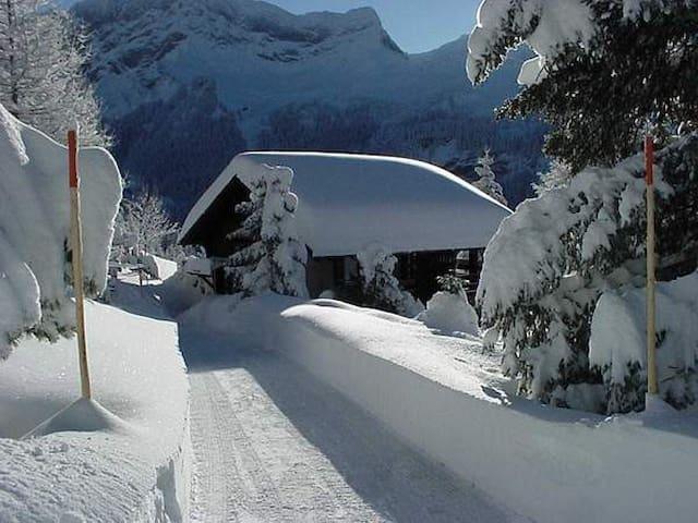 Chalet Julia Villars sur Ollon / Alpe des Chaux - Gryon