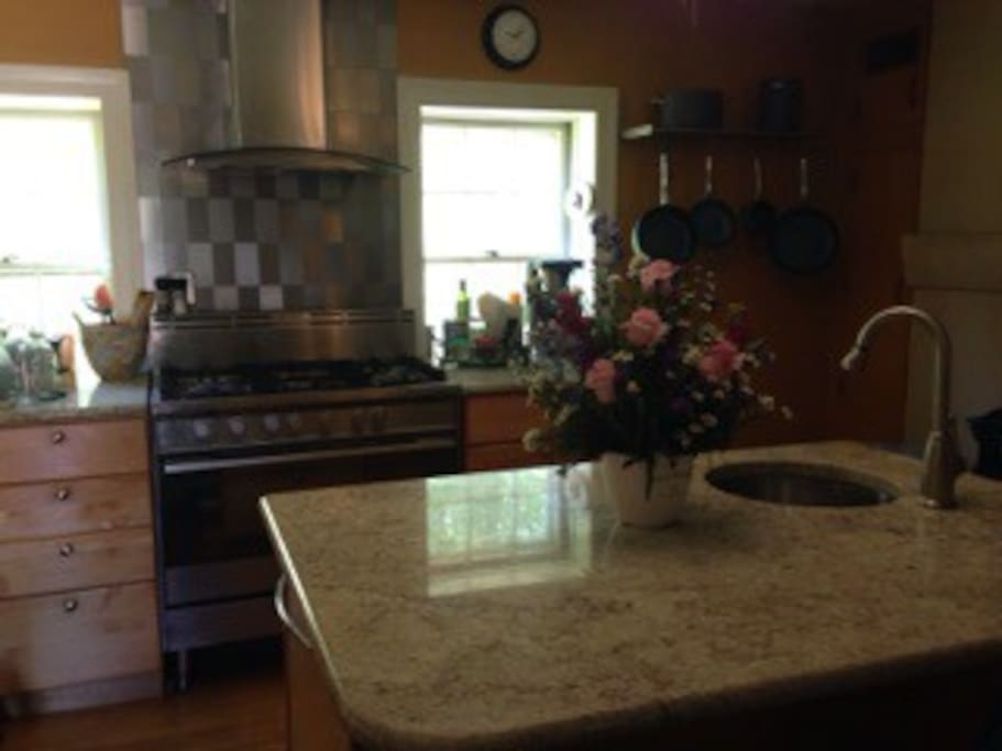 Full gourmet kitchen with high end appliances.