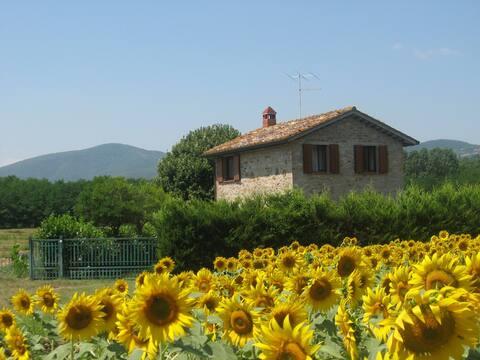 Casolare nel cuore verde d'Italia
