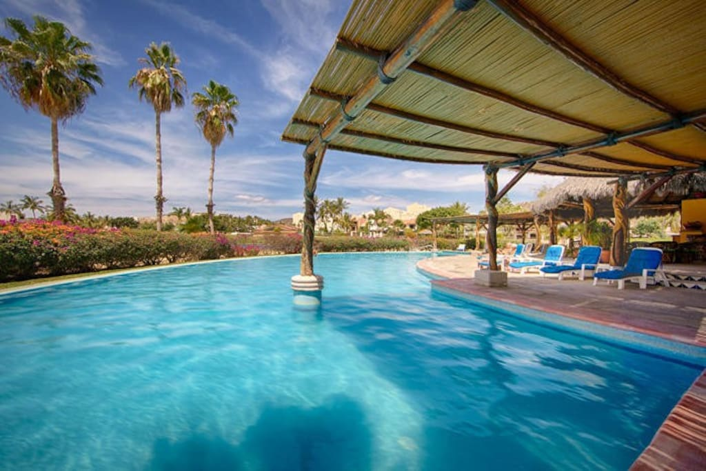 Beautiful Cresent Common area Pool with huge Palapa & Lounge chairs
