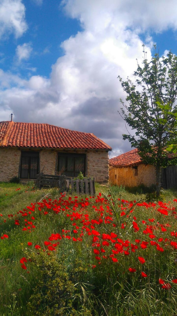 "Town house ""La Taina"""