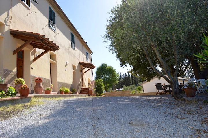 Country Flat in Suvereto, Tuscany
