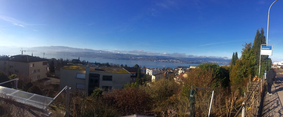 Guestroom with a Beautiful Zurich Lake View - Männedorf - Apartament