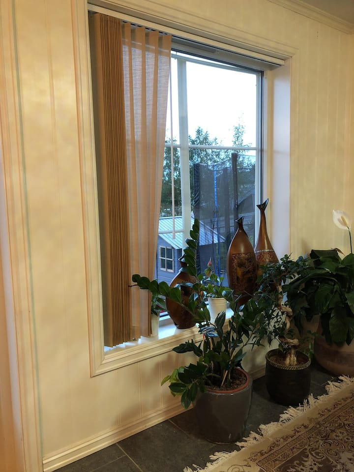 Stort romslig hus med hage på Byåsen