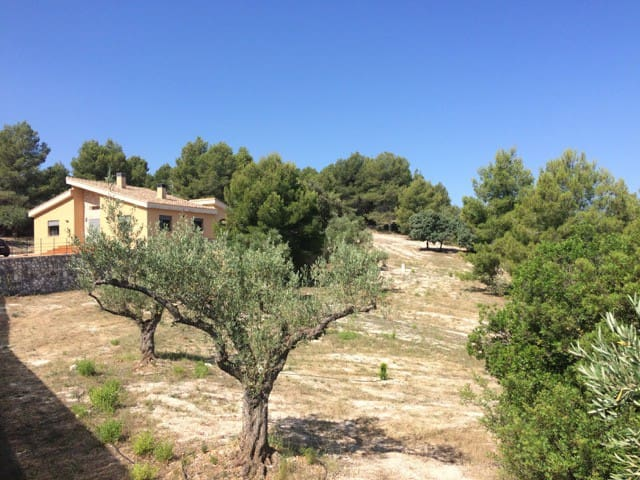 Villa de standing au calme en pleine nature
